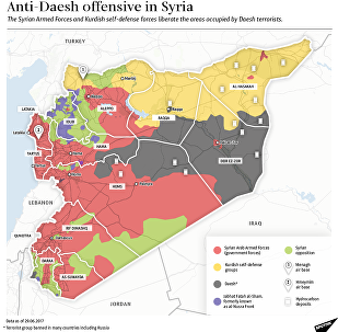 Anti-Daesh Offensive in Syria