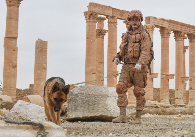 Engineers at the International Main Action Center of the Russian Armed Forces clear the historical part of ancient Palmyra of mines.