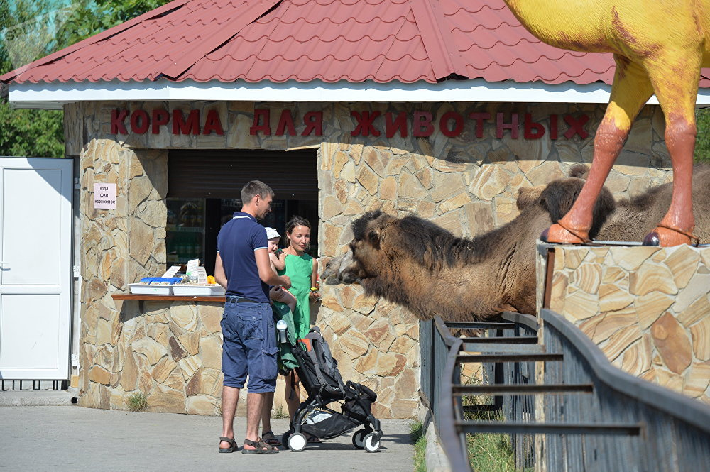 Delight for the Eye: Crimea's Incredible Animal Paradise