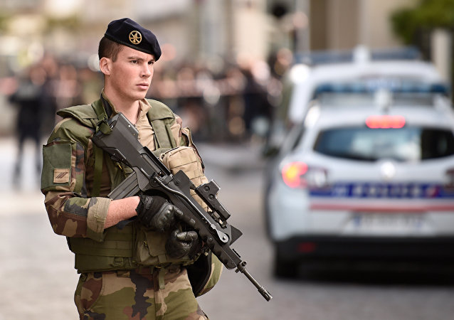 Armed French soldier. (File)