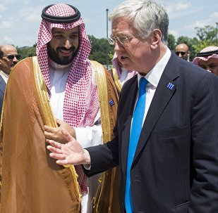 Saudi Minister of Defense Deputy Crown Prince Mohammed bin Salman and British Defense Secretary Michael Fallon speak during a meeting of the Global Coalition to Counter ISIL at Joint Base Andrews in Maryland, July 20, 2016.