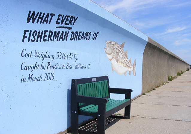 Canvey sea wall mural