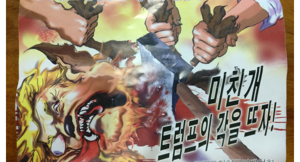 An anti-Trump leaflet believed to come from North Korea by balloon is pictured in this undated handout photo released by NK News on October 16, 2017. The text in Korean reads For the peaceful world without war and for the future of mankind (top) and Butcher a mad dog Trump!