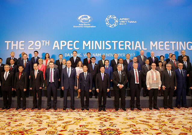 Ministers gather for a group photo after the APEC Ministerial Meeting (AMM) ahead of the Asia-Pacific Economic Cooperation (APEC) Summit leaders meetings in Danang, Vietnam, November 8, 2017