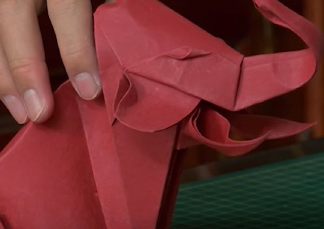 Intricately Skilful Origami from Vietnam