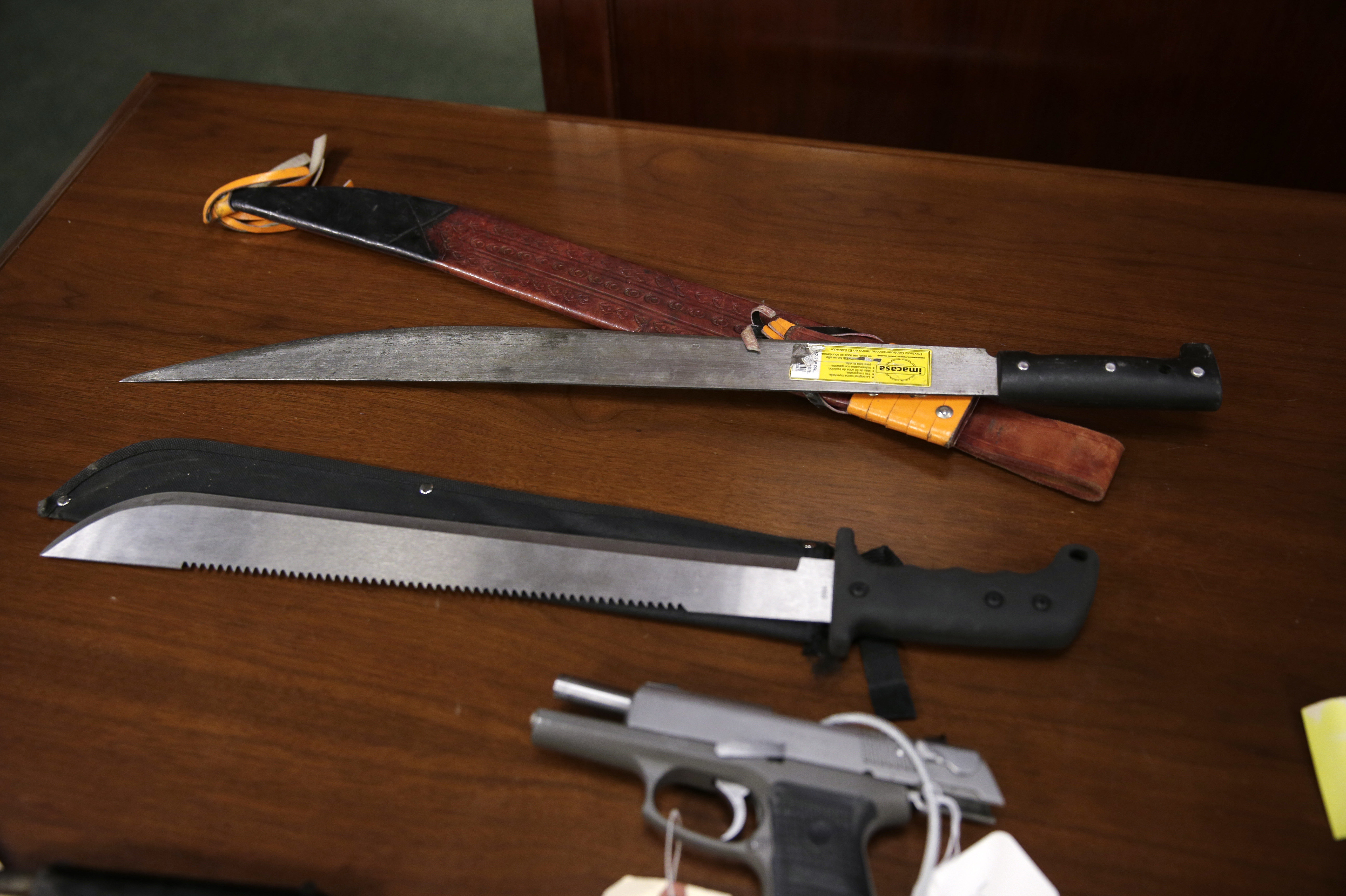 Weapons on display at the U.S. Attorney's office following the arrests of gang members in Boston, Friday, Jan. 29, 2016. Authorities say they have charged 56 members of the MS-13 gang in and around Boston. The gang is notoriously violent and known for using machetes to kill victims. According to court documents, in 2012, MS-13 became the first and remains the only street gang to be designated by the U.S. government as a transnational criminal organization.