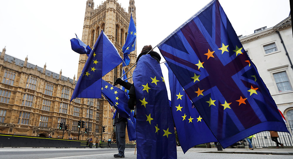 Anti-Brexit protesters wave EU and Union flags outside the Houses of Parliament in London, Britain, November 14, 2017