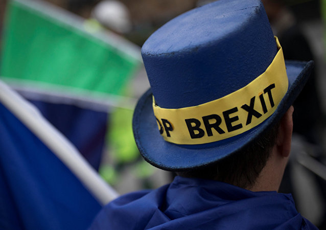An Anti-Brexit protestor's hat displays the words 'Stop Brexit' as he stands outside the Houses of Parliament in London, Britain December 5, 2017.
