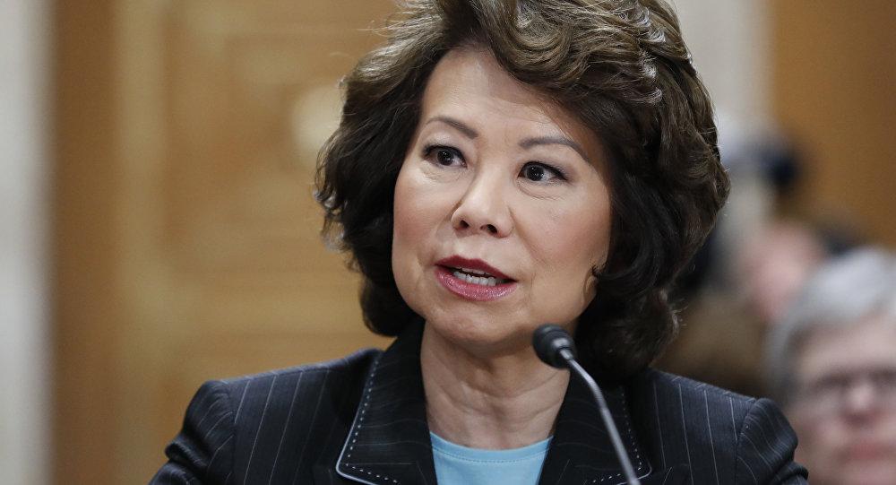 Transportation Secretary Elaine Chao testifies on Capitol Hill in Washington (File)
