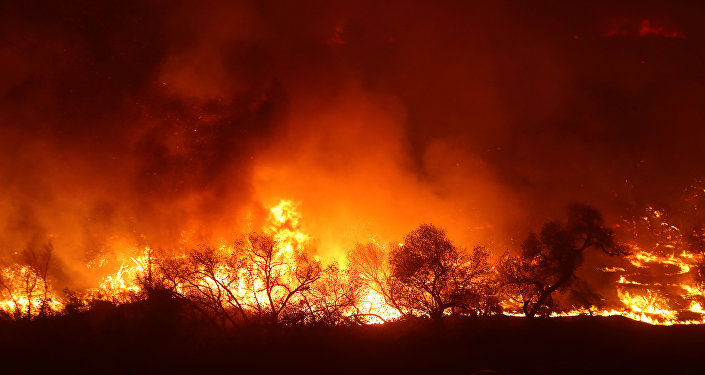 A car drives past a large wall of approaching flames from the Lilac Fire a fast moving wild fire in Bonsall California U.S