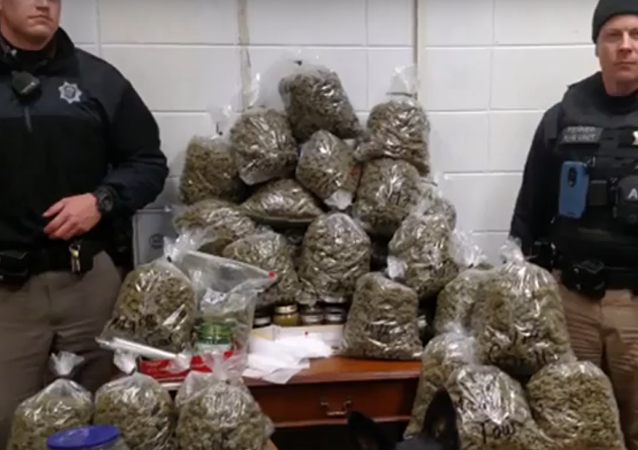 High Holidays? Elderly Couple Arrested With $336K of Pot, Claims it Was Christmas Gifts