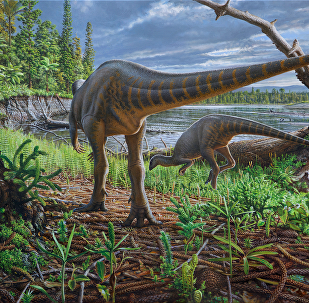 Artist's impression of two Diluvicursor pickeringi foraging on the bank of a high-energy river within the Australian-Antarctic rift valley are seen in this image provided January 11, 2018
