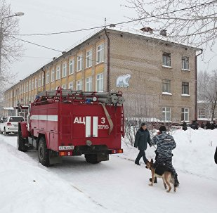 A view shows a local school after reportedly several unidentified people wearing masks injured schoolchildren with knives in the city of Perm, Russia January 15, 2018