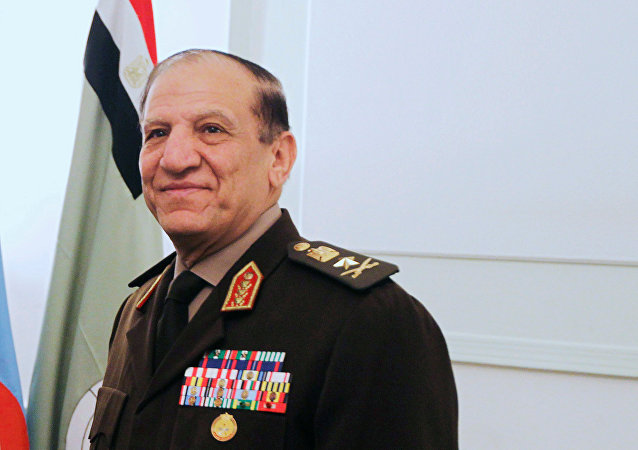 FILE PHOTO - Egypt's Chief of Staff of the Armed Forces Sami Anan during a meeting in Cairo, Egypt