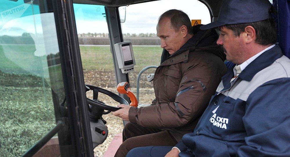 Vladimir Putin seen inside the grain harvester (File)