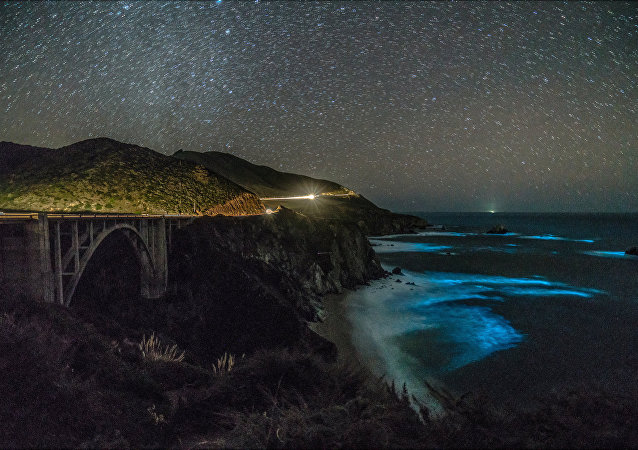 Bioluminescent phytoplankton is seen along the coastal waters at Big Sur, California, U.S., February 5, 2018.
