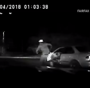 Virginia man running away from cops gets run over by own car