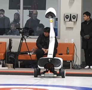 "Curling Robot ""Curly"""