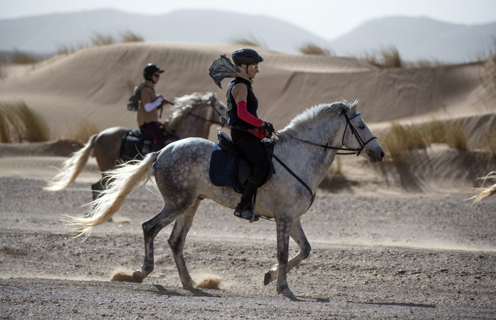Desert Stallion Race 'Gallops of Morocco' Participants Endure Rough Conditions