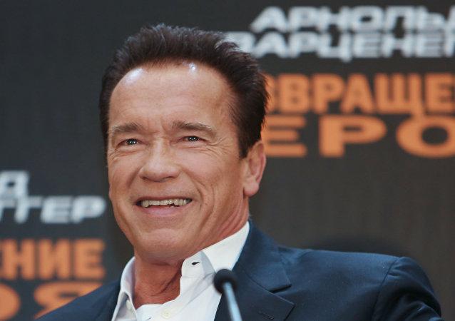 Actor Arnold Schwarzenegger. (File)