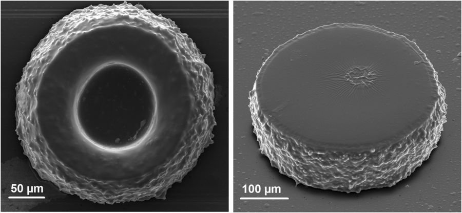 SEM images of 3D polymer microstructures obtained by NIR-light-activated photopolymerization in a thin layer