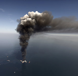 A large plume of smoke rising from BP's Deepwater Horizon offshore oil rig in the Gulf of Mexico on April 21, 2010