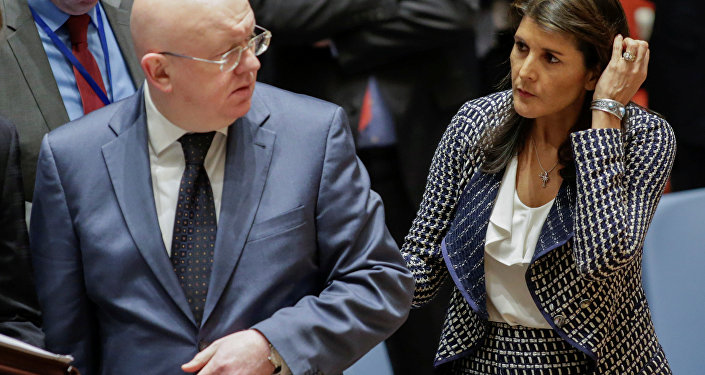 United States Ambassador to the United Nations Nikki Haley and Russian Ambassador to the United Nations Vasily Nebenzya are seen before the United Nations Security Council meeting on Syria at the U.N. headquarters in New York, U.S., April 13, 2018