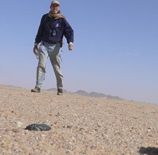 Peter Jenniskens, a meteor astronomer at NASA's Ames Research Center and the SETI Institute Mountain View in California found his first fragment of the meteor that exploded over Sudan on February 28, 2009. This fragment broke into two pieces when it landed.
