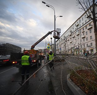 Consequences of the storm that hit Moscow on Saturday, April 21.