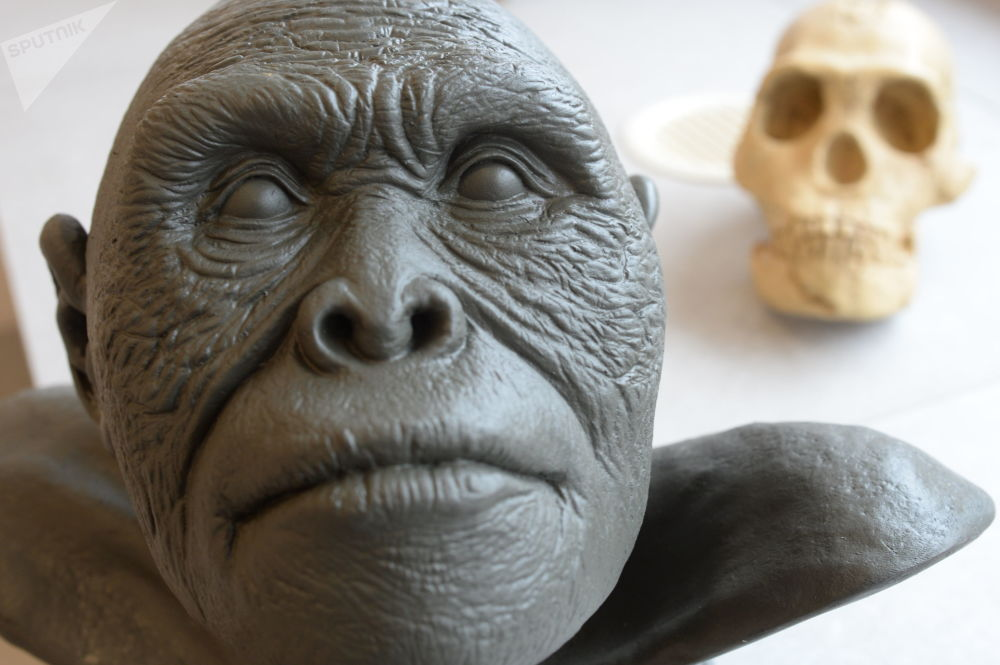 The Wonderful Discovery of Homo Naledi, a New Twist in Anthropology