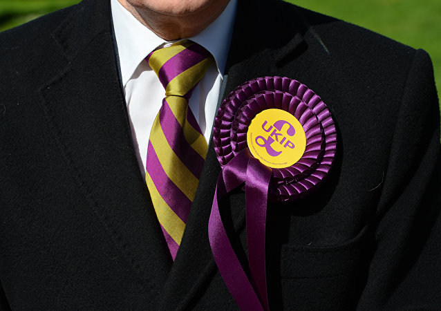 A voter wears a UK Independence Party (UKIP) rosette as he stands outside a polling station in Brighton, southern England on May 7, 2015