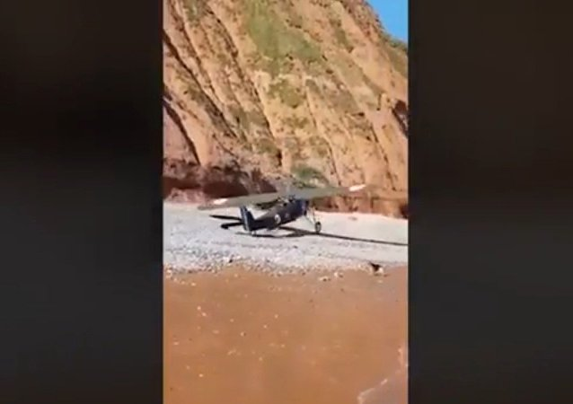 What is he doing? Beachgoers flee for their lives as they film vintage plane making emergency