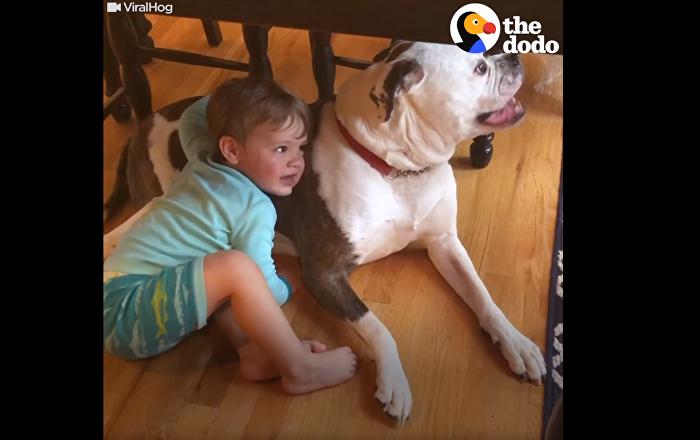 Thunder Buddies: Toddler Consoles Pup Through Storm