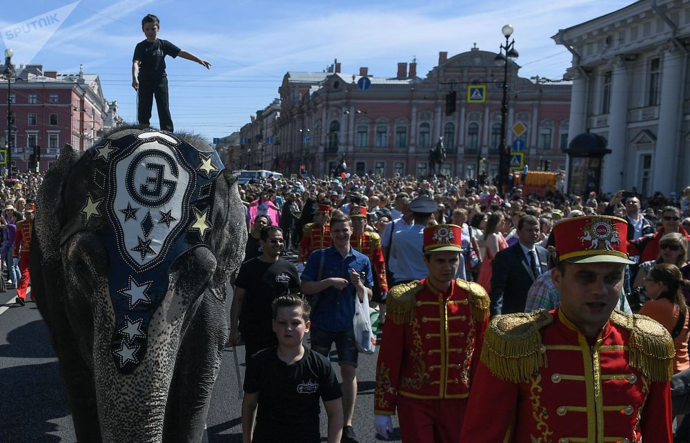 St. Petersburg Celebrates City Day: Drummers, Bicycles and an Elephant Parade