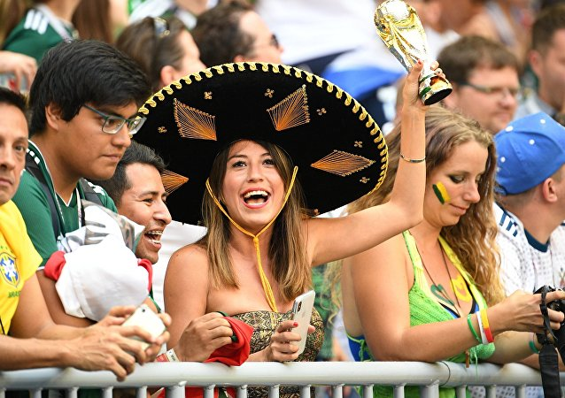 Mexico's fans cheer waiting for the start of the World Cup Round of 16 soccer match between Brazil and Mexico, in Samara, Russia, July 2, 2018