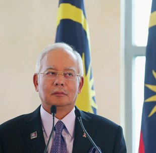 Malaysia's Prime Minister Najib Razak during a joint news conference with Dutch Prime Minister Mark Rutte in Putrajaya November 5, 2014