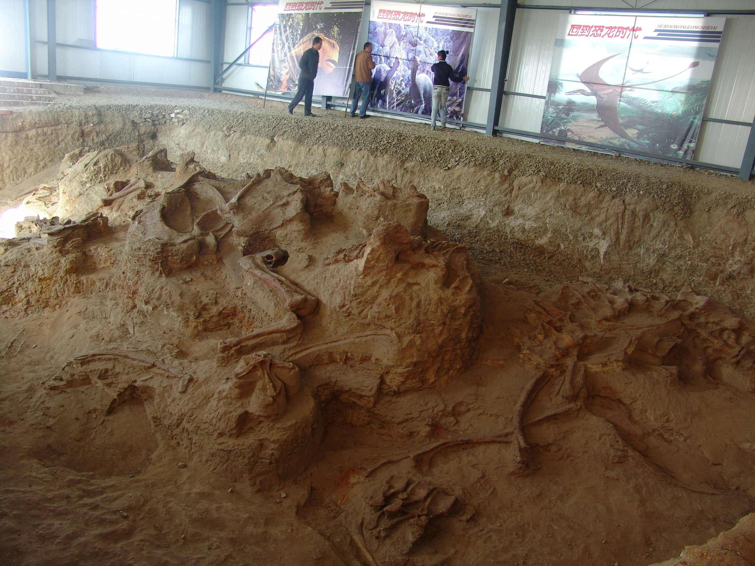 One of the four quarries producing fossils of Lingwulong, a newly discovered dinosaur unearthed in northwestern China is seen in this image provided July 24, 2018.