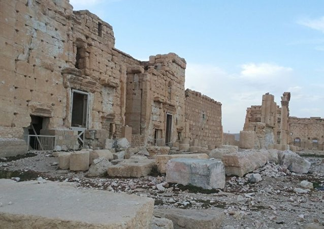 Liberated Palmyra