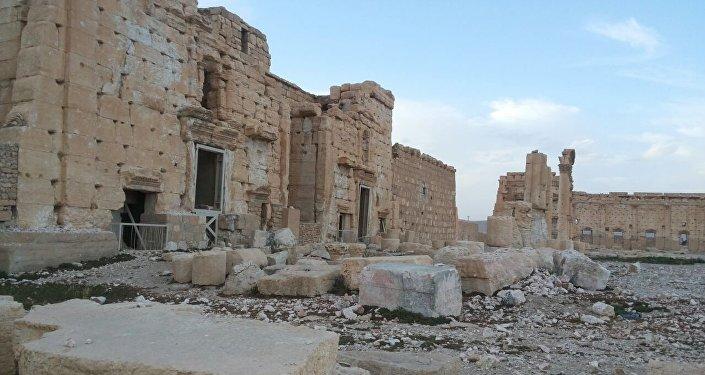 Liberated Palmyra