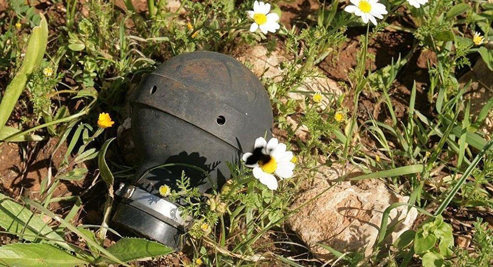 Tear gas canister, Ni'lin
