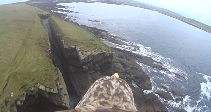 Bird's Eye View: Eagle Presents Tour of Scotland's Orkney