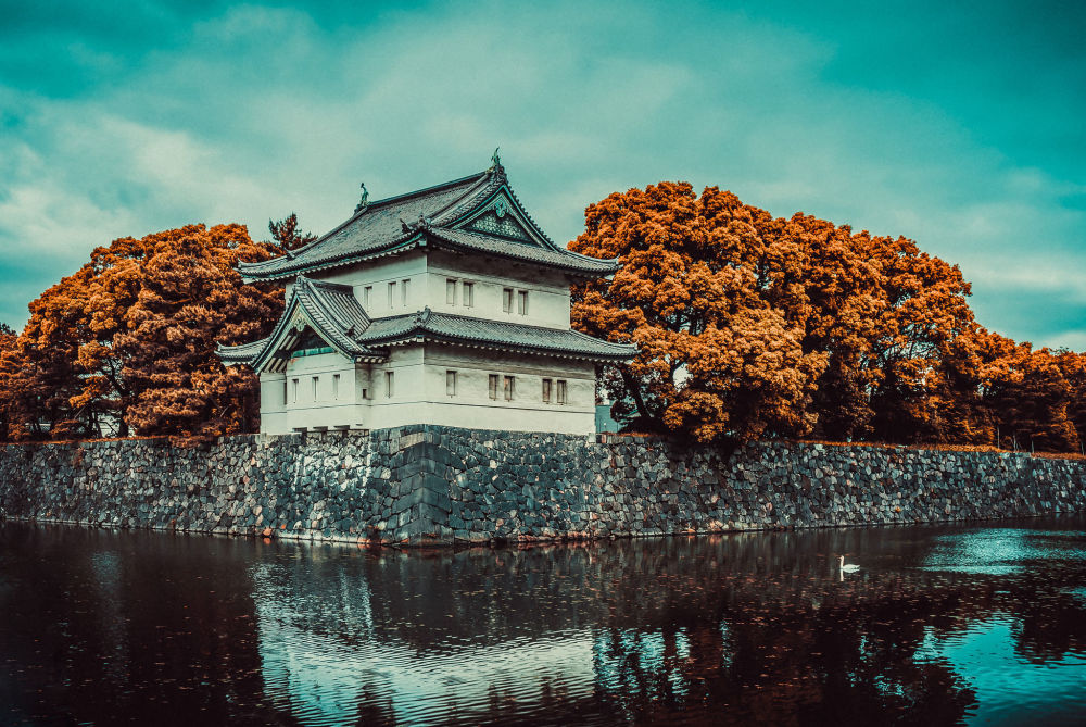 Tokyo Imperial Palace in Autumn Glory