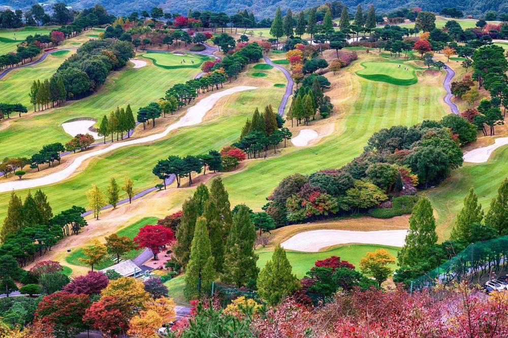 Autumn in Golf Park