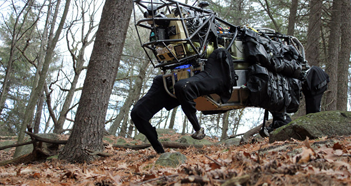 Boston Dynamics 'Big Dog' battlefield robot