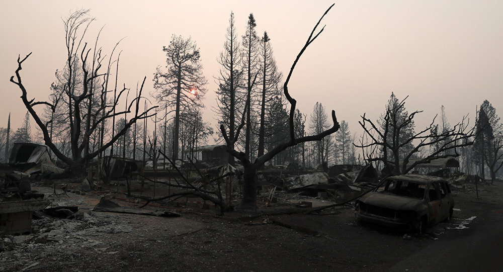 A neighborhood destroyed by the Camp Fire is seen in Paradise, California