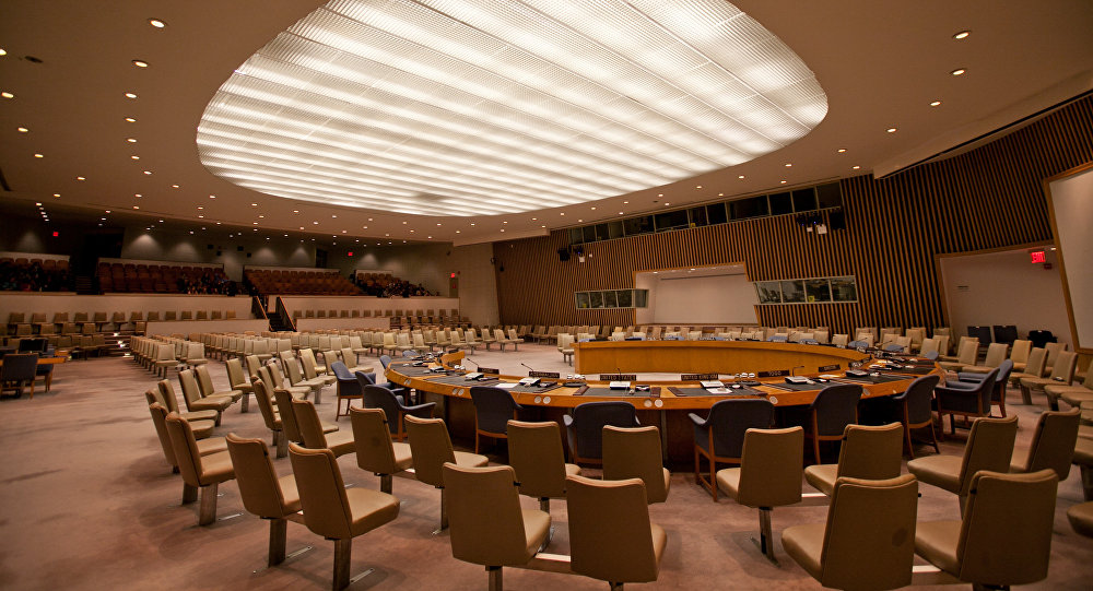 Togo Hopes Russia Helps Correct 'Historic Injustice' of Africa Underrepresentation in UNSC