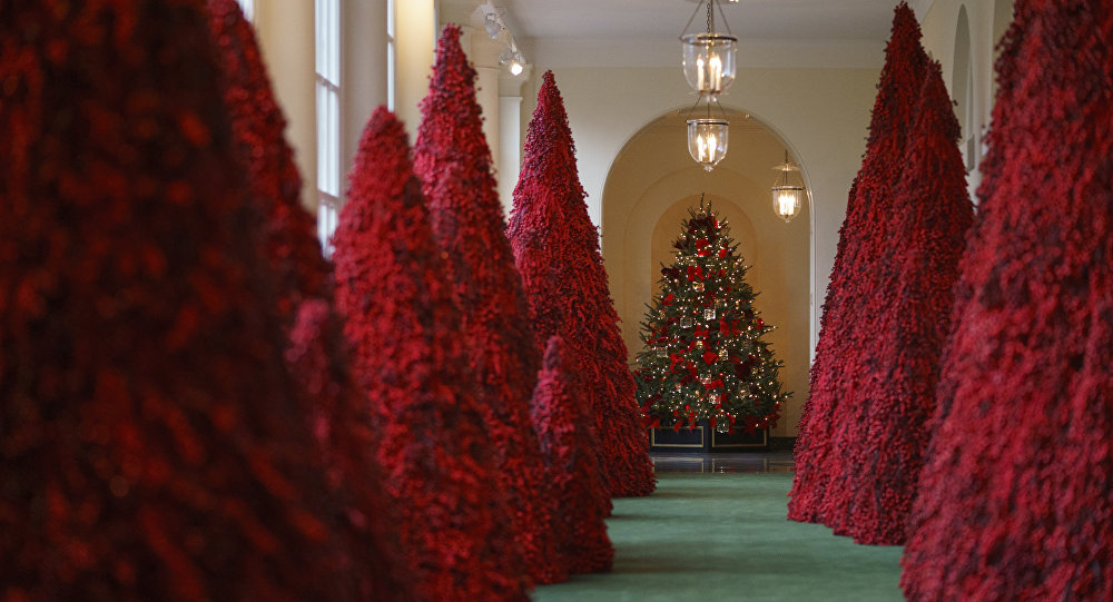 White House Christmas decorations finally unveiled