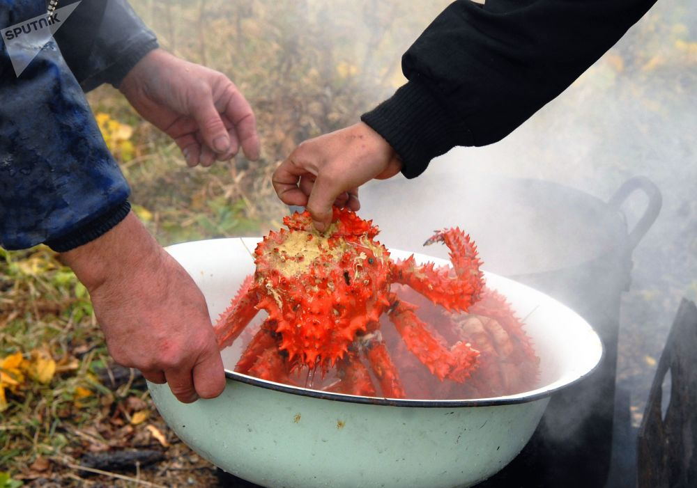 Shikotan Island Residents are Cooking Crabs