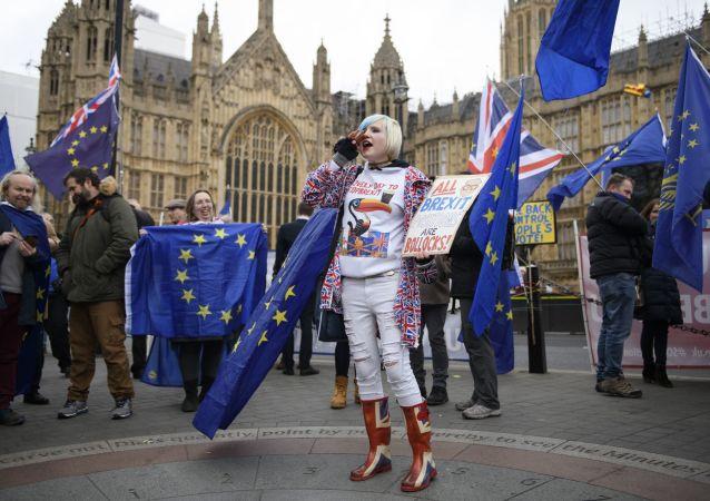 Участники акции против Brexit у здания парламента Великобритании в Лондоне