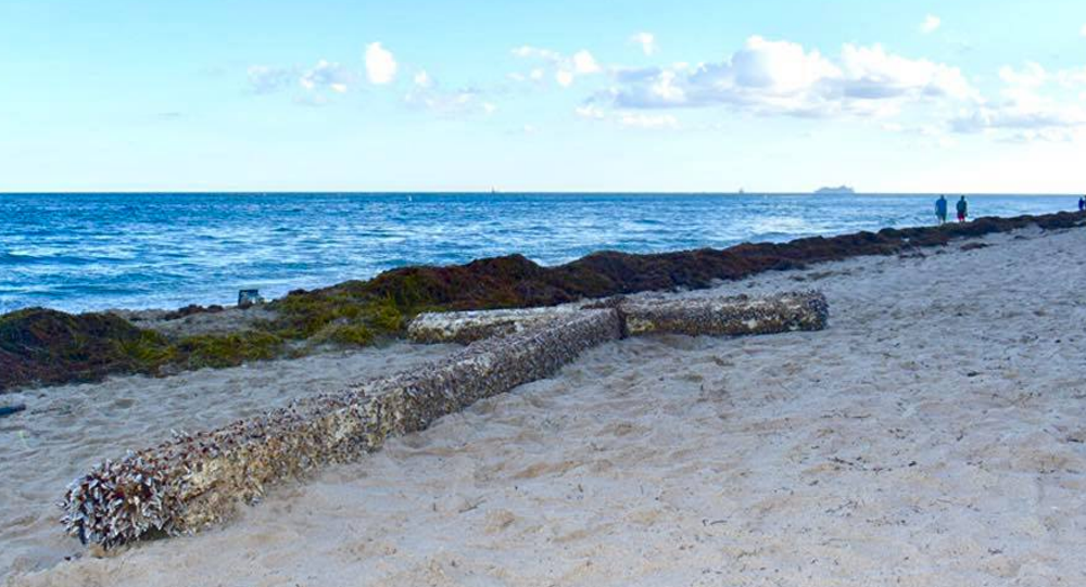 Giant Cross Washes Ashore Florida Beach